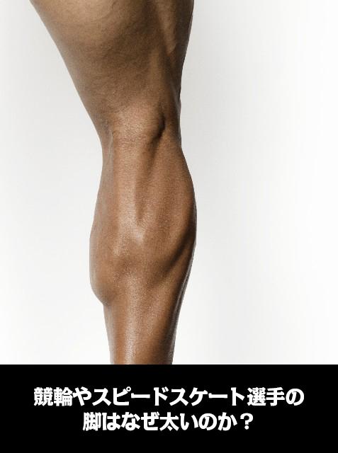 競輪やスピードスケート選手の脚はなぜ太いのか?